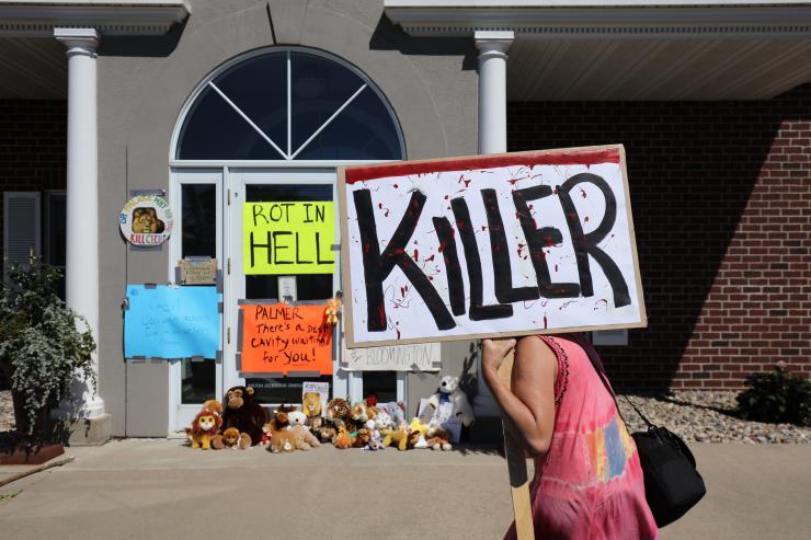 Cecil-lion-protest